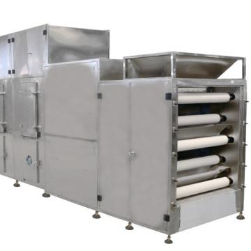International Food Grade Fruits Freeze Dryer Machine