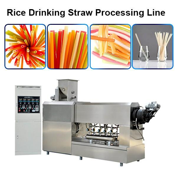 China Best Service Automatic Plastic Drinking Straw Extruder