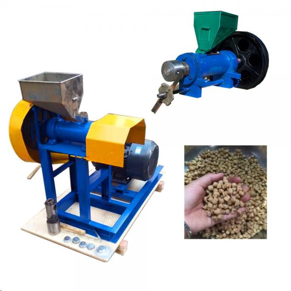 CE Certificated Floating and Sinking Fish Feed Production Line