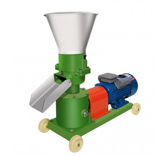 Automatic Pet Food Weighing and Packing Machine