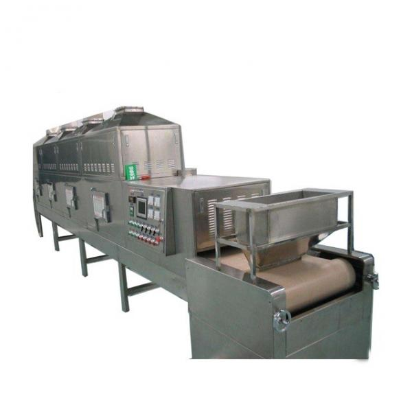 Reliable and High Capacity Fuits Microwave Dewatering Machinery for Factory with Ce